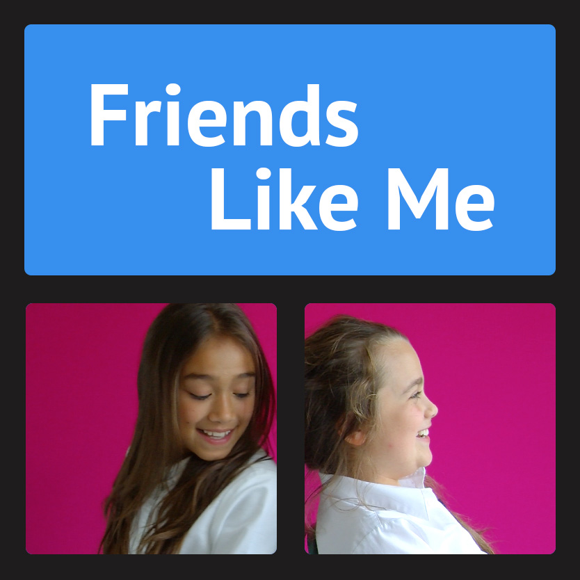 Friends Like Me Project